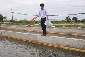 Nâng cao hiệu quả nuôi trồng thủy sản: Nhất con giống, nhì khoa học kỹ thuật