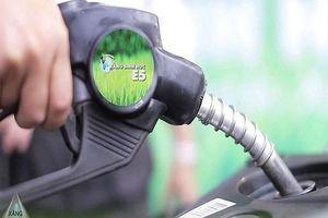 Sử dụng xăng sinh học E5 có lợi ích gì?