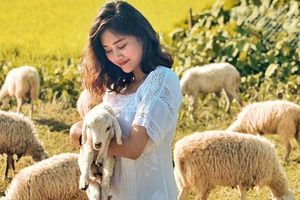 Check-in liền tay đồng cừu Suối Tiên mới toanh 'sát vách' Ninh Thuận