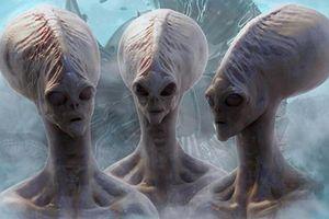Sự thật kinh dị cuộc 'ân ái' kỳ quái với người ngoài hành tinh