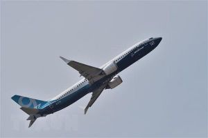 Phi công Mỹ: Cần nâng cao chương trình huấn luyện lái Boeing 737 MAX