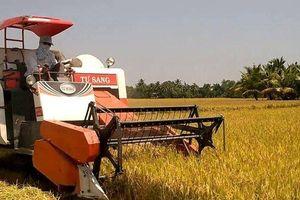 Kỷ luật nữ cán bộ huyện nhận hơn 230 triệu đồng tiền 'cảm ơn' của nông dân