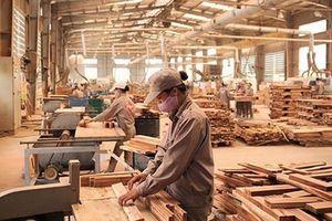 Việt Nam lần đầu tiên áp thuế chống bán phá giá với sản phẩm gỗ công nghiệp