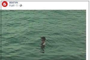 Ngâm mình dưới nước quay MV, Đen Vâu được CĐM so sánh với… 'quái vật hồ Loch Ness'