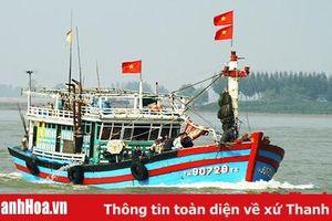 Bảo đảm an toàn cho người, tàu cá hoạt động trên biển