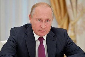 Tổng thống Nga Putin nhận hơn 1 triệu câu hỏi đối thoại trực tuyến
