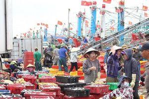 Nghệ An: Đưa nghề cá gia nhập 'sân chơi chung' bình đẳng