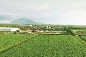 TTC khẳng định không đóng cửa nhà máy đường