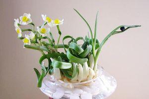 5 loại hoa đẹp bày phòng khách giúp tăng tài vận cho gia chủ