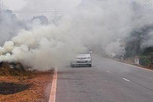 Hà Nội: Xử lý nghiêm hành vi phơi, đốt rơm rạ trên đường