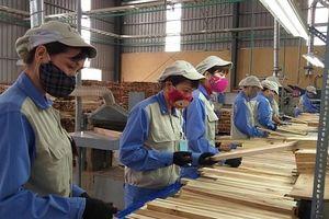 Lo ngại chất chồng khi FDI từ Trung Quốc vào ngành gỗ vọt tăng