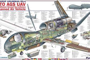 Cận cảnh máy bay không người lái Global Hawk của Mỹ bị tên lửa BUK-2 Iran bắn hạ