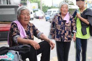 Bà nội 80 tuổi, 6 năm ròng ngồi trước cổng trường 8 tiếng chờ cháu thiểu năng đi học