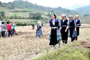 Phát triển sinh kế bền vững cho phụ nữ nông thôn
