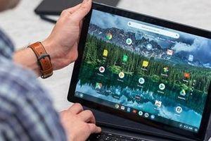 Google từ bỏ ước mơ máy tính bảng