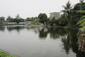 Lâm Đồng: Đi chích cá sau lũ, một học sinh bị điện giật tử vong