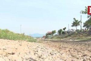 Quảng Bình đối diện với hạn hán, gần 1000ha lúa nguy cơ bị cháy