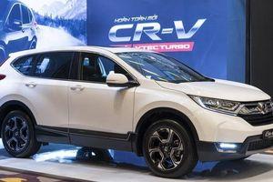 Honda Việt Nam thông tin về hiện tượng cứng chân phanh trên xe CR-V 2019