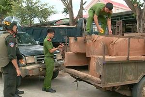 Đắk Lắk: Cảnh sát nổ súng, bắt nhóm lâm tặc liều lĩnh