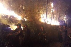 Hàng nghìn người trắng đêm dập lửa, cứu rừng thông ở Nghệ An