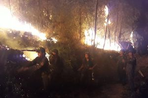 Gần nghìn người trắng đêm chữa cháy rừng thông