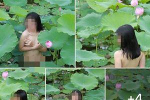 Tranh luận việc Hà Nội cấm chụp nude bên hồ sen