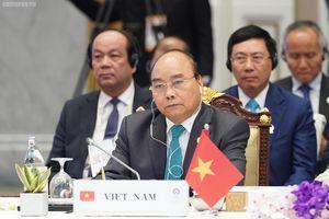 Thủ tướng: Hòa bình, ổn định không tự đến