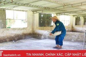 Địa phương đầu tiên xuất hiện dịch tả lợn châu Phi tại Hà Tĩnh qua 30 ngày không phát sinh ổ dịch mới