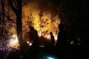 Nghệ An: Nghìn người trắng đêm chữa cháy rừng thông