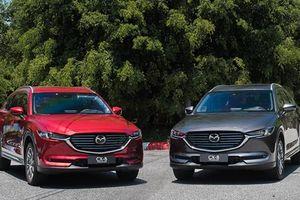 Mazda CX-8, biến thể giá rẻ của CX-9 chào khách Việt