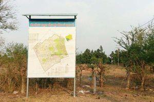 Dự án Sài Gòn Safari, UBND TP. HCM giao chủ đầu tư không đủ năng lực