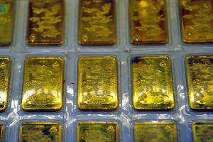 Sau khi tăng 'phi mã', giá vàng hôm nay vẫn giữ được giá cao?