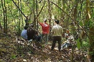 Lâm Đồng: Phát hiện thi thể người đàn ông dưới vực sâu