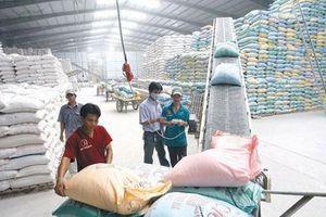 Tự động hóa trong sản xuất - Cách làm mới của doanh nghiệp gạo FDI