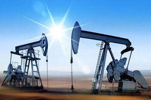 Giá xăng, dầu (24/6): Tạm dừng 'sốt' giá