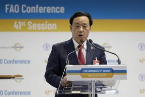 Người Trung Quốc đầu tiên đắc cử Giám đốc FAO