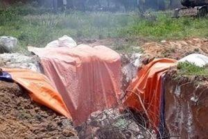 Vì sao trại lợn 20.000 con ở Đồng Nai dính dịch tả lợn Châu Phi?