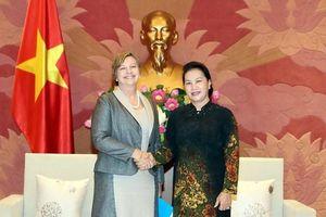 Chủ tịch Quốc hội Nguyễn Thị Kim Ngân tiếp Trưởng đại diện UNICEF tại Việt Nam