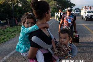 Mỹ khó khăn trong việc giải quyết tình trạng trẻ em nhập cư trái phép