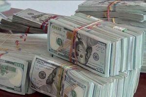 An Giang: Bắt vụ vận chuyển 470.000 USD qua biên giới