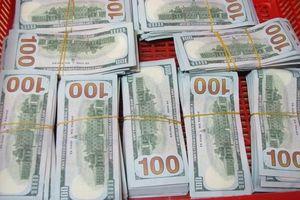 Phát hiện gần nửa triệu USD vận chuyển trái phép từ Campuchia về Việt Nam