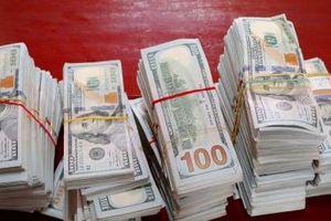 An Giang: Bắt giữ vụ vận chuyển 470.000 USD qua biên giới