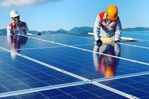 FECON chính thức vận hành thương mại Nhà máy Điện mặt trời Vĩnh Hảo 6