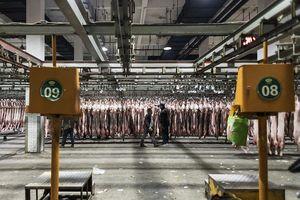 Giữa tranh cãi vụ Huawei, TQ đình chỉ nhập thịt từ Canada