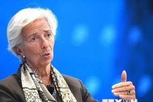 IMF đánh giá triển vọng kinh tế tại các vùng lãnh thổ Palestine