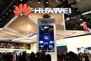 Hoạt động kinh doanh 5G của Huawei không bị ảnh hưởng do lệnh trừng phạt của Mỹ