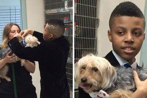 Cậu bé 12 tuổi làm nơ cho chó mèo để giúp chúng dễ tìm được chủ mới hơn
