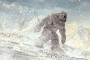Quân đội Ấn Độ tuyên bố đã tìm thấy bằng chứng về người tuyết bí ẩn