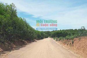 Quảng Bình: Doanh nghiệp sử dụng đất 'lậu' để thực hiện dự án tiền tỷ?