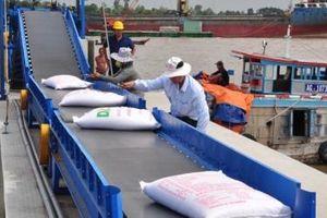 Xuất khẩu gạo gặp khó về thị trường